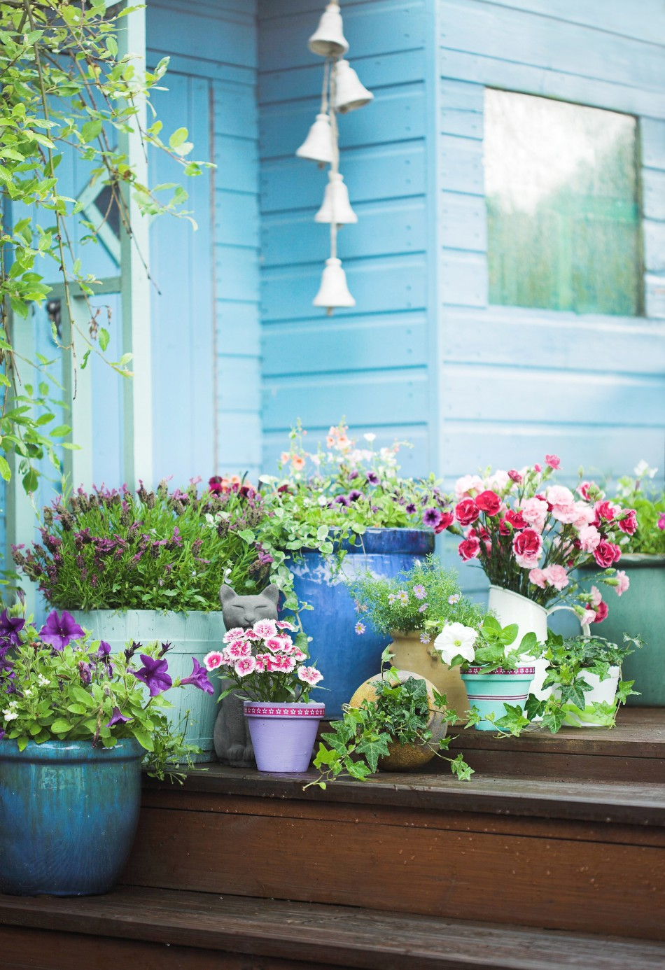 Small Space and Container Gardening: Tips, Tricks, and Best Varieties